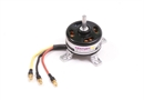 Century UK Max Thrust Riot Brushless Motor